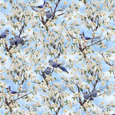 Blank Quilting 9006-11 Birds Of A Feather Blue Jays Lt Blue Fabric By Yard