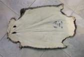 Uptone Brown Beaver Skin