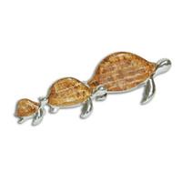 Seed Sea Turtles