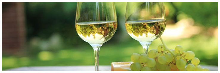 Various assortment of cheese, grapes and two glasses of white wine.