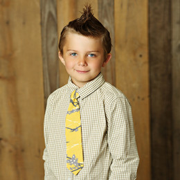 Mustard Pie Sunset Dunes Boy's Neck Tie - Mustard