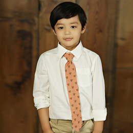 Mustard Pie Amber Fields Boy's Necktie - Brick