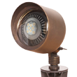 par36 LED landscape light