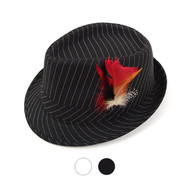6pcs Two Sizes Spring/Summer Fedora Hat with Feather H1024-6526