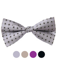 Banded Silk Printed Bow Tie SBB2040