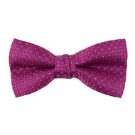 "Boy's 2"" Plum Dotted Grid Polyester Woven Banded Bow Tie FBB35"