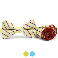 Striped Banded Bow Tie & Matching Hanky Pocket Round Set BTH170329