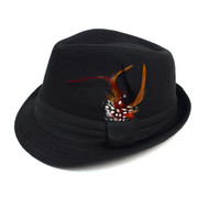 Fall/Winter Fedora Hat with Feather Accent & Band Trim H10333-BK