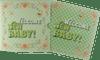 Baby Pram Tokelau 1oz Silver Coin 2018 Presentation folder