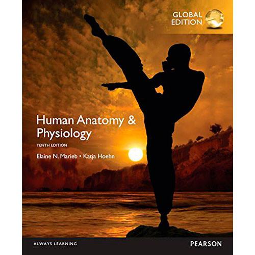 Human Anatomy & Physiology (10th Edition) Marieb IE