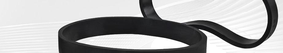 Vacuum Belts