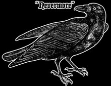 Nevermore T-Shirt by A.M. Stephens