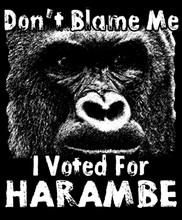 I Voted Harambe T-Shirt