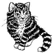 Striped Kitten Rubber Stamp - 70A07