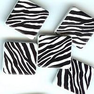 Zebra Striped Square Large Brads
