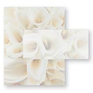 Cala Lillies Invitation & Note Card Set