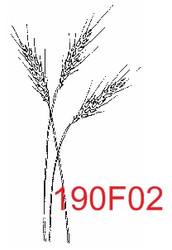 Wheat Rubber Stamp - 190F02