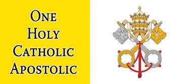 One Holy Catholic Apostolic Vatican Flag Mug