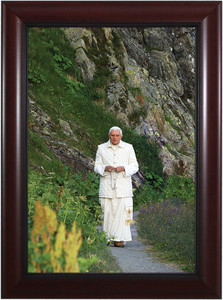 Pope Benedict In Mountains - Cherry Framed Art