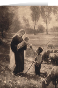 Gift of the Shepherd Christmas Cards (25 Cards)