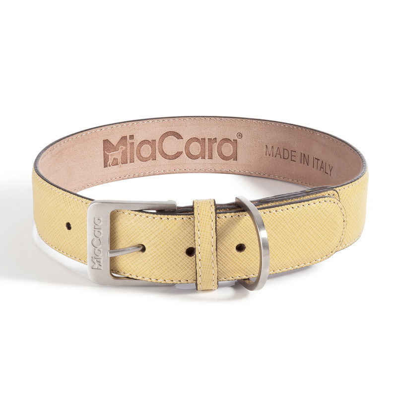 Dog Collar - Torino Lemon_Walk_Large_www.hugoandotto.com