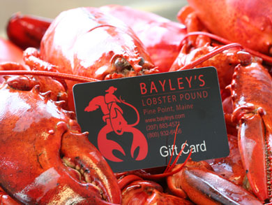 bayleys-gift-certificate-lg.jpg