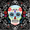 Day Of The Dead Beverage Napkins 701519