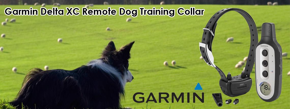 Au S Best E Collars Gps Dog Tracking Dog Training Amp Dog