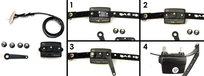 pac-mini-fit-collar.jpg