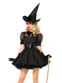 3pc Bewitching Witch Costume