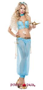 Yasmine Costume (S5104)