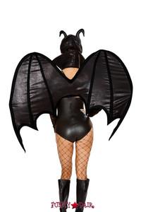 R-4791, Wings