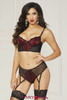 STM-10831, Bra and Panty with Garter Attached