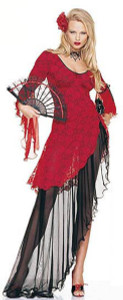 Flamenco Dancer Costume (83031)