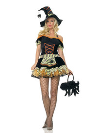 Black Widow Witch Costume (83273)