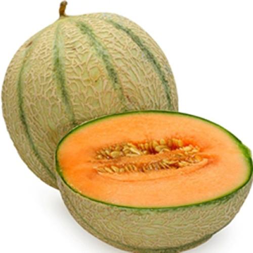 Cantaloupe-TFA