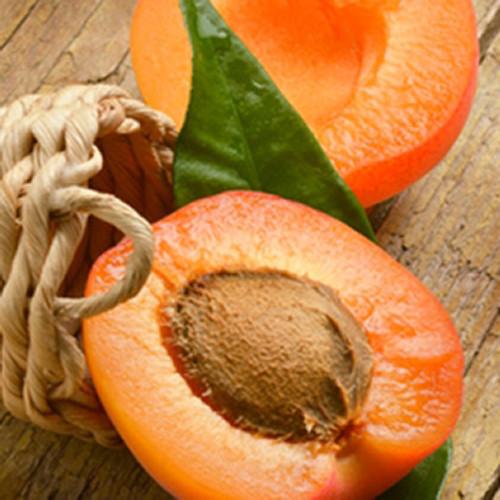 Apricot-TFA