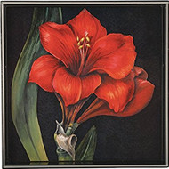 """Rock Paper Flower Red Amaryllis 15"""" Square Tray"""