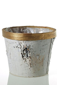 "5""x 4.25"" Birch Round Pot with Gold Trim"