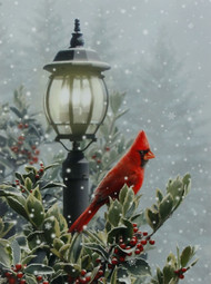 "24"" Lamp Post Cardinal Lighted Wall Print"