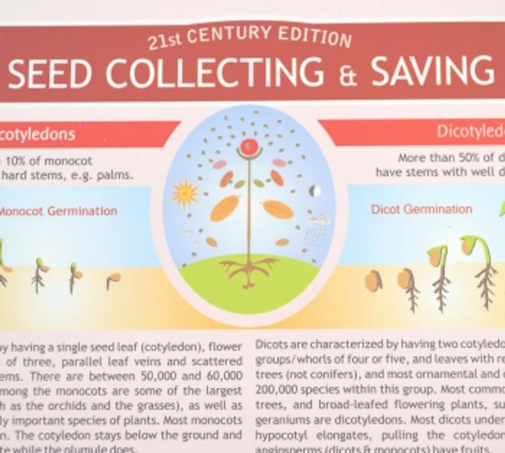 Seed Collecting & Saving Chart