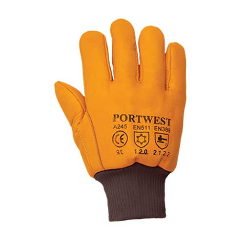 Antarctica Thinsulate™ Glove