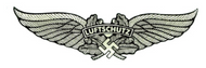 Luftschutz German Helmet Decal