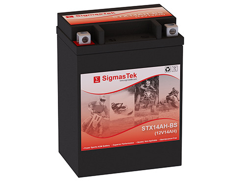 Battery For  Yamaha Bear Tracker Cc
