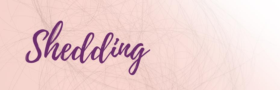 de-web-shedding-header.jpg