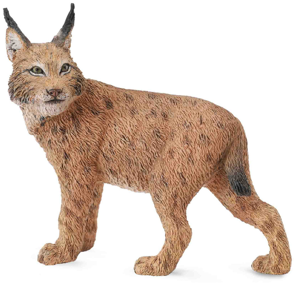 Lynx CollectA