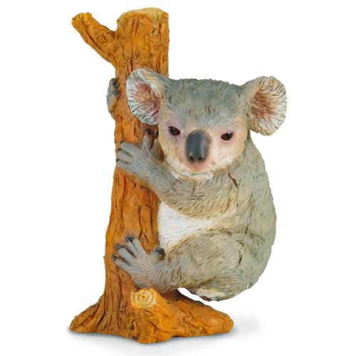 Koala CollectA