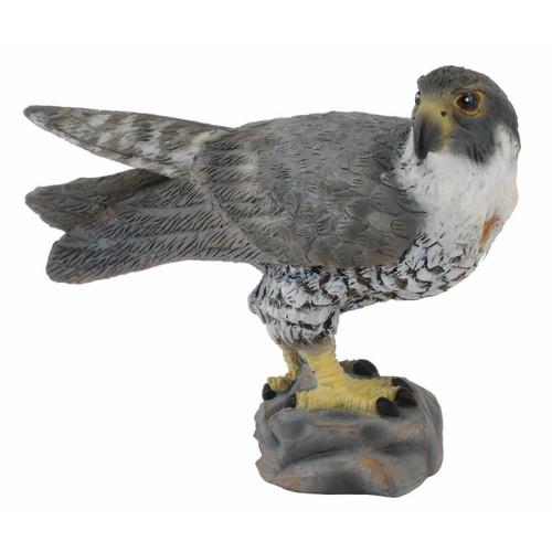Peregrine Falcon CollectA