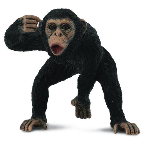 Chimpanzee Male CollectA