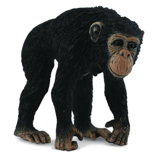 Chimpanzee Female CollectA